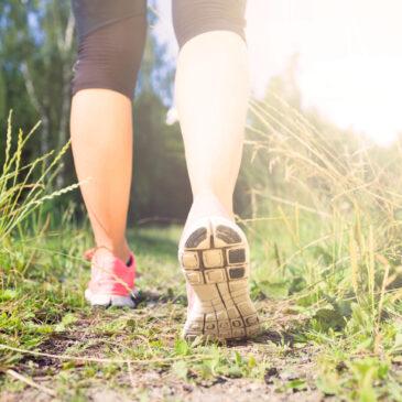 Bevæg dig – gå en tur